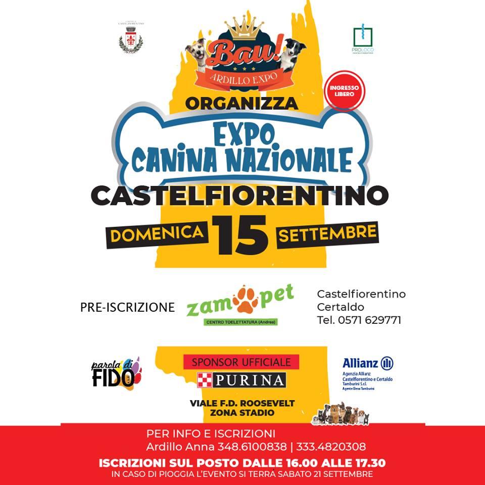 Festa della birra castellana Expo_c10