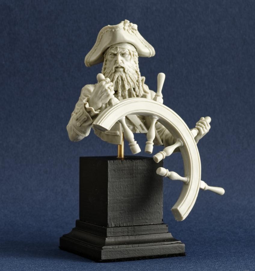 Pirate Imgp0082