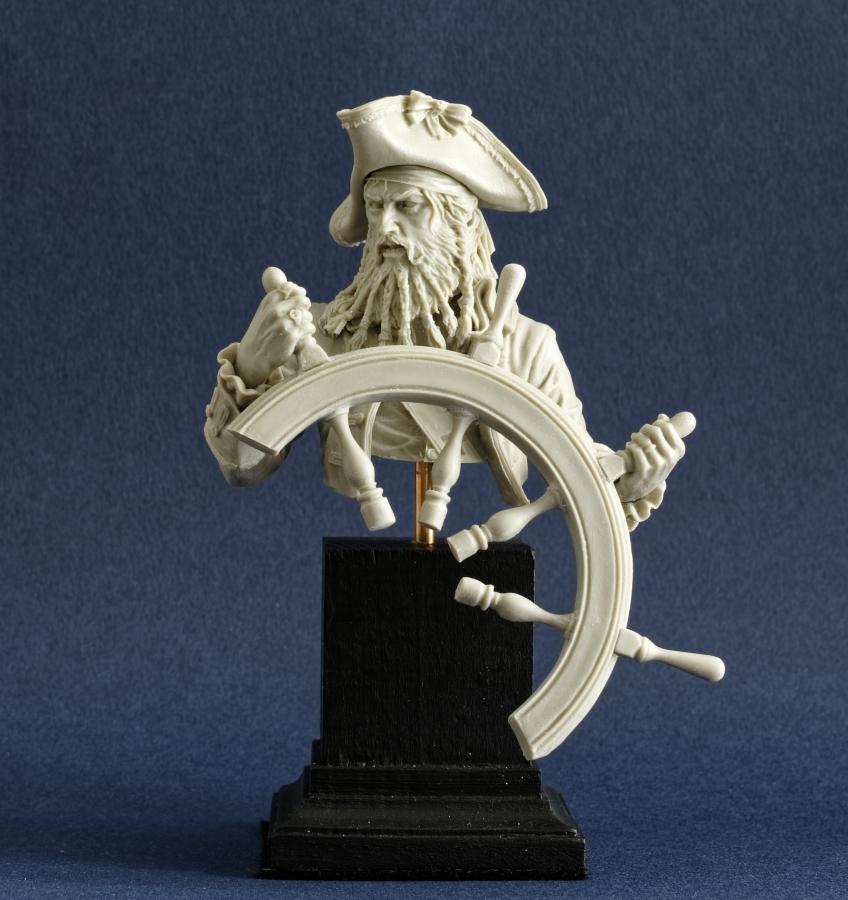 Pirate Imgp0083