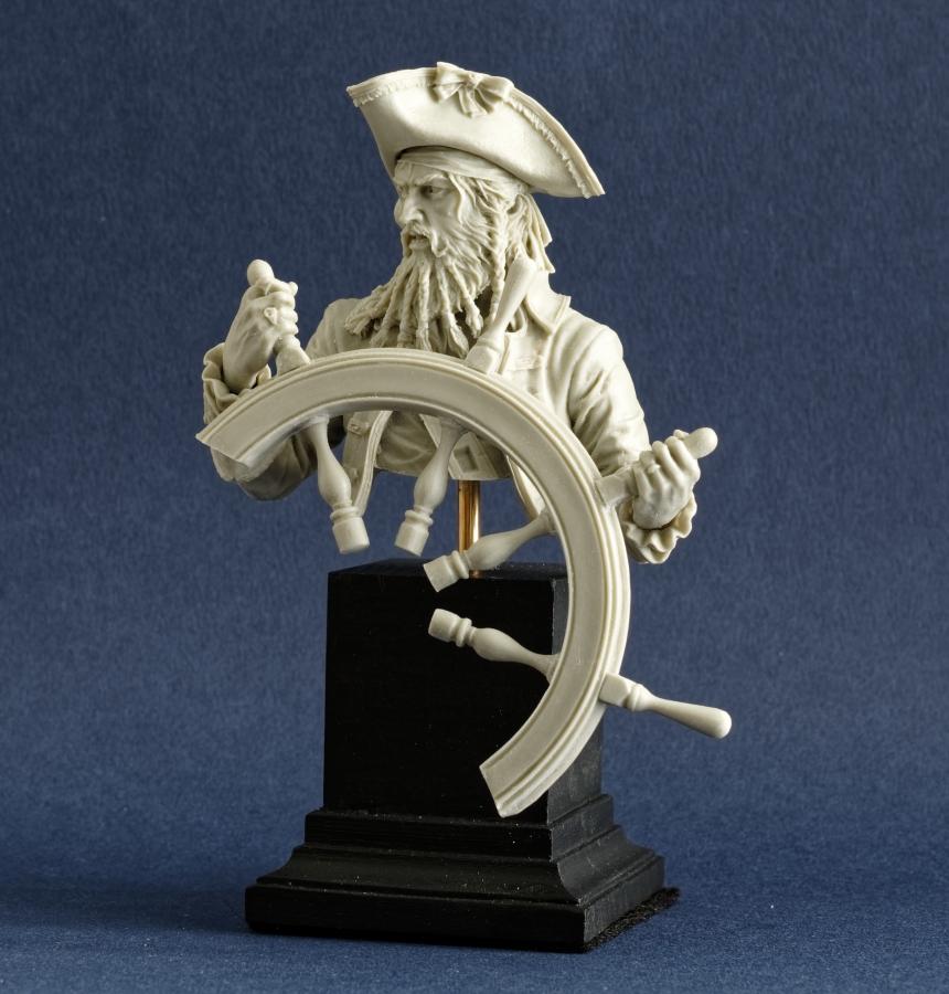 Pirate Imgp0092