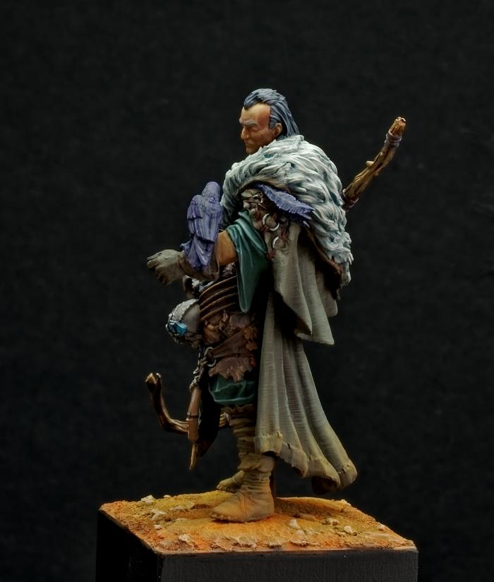 Merlin Imgp0123