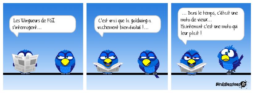 pourquoi la goldwing? - Page 2 15747910