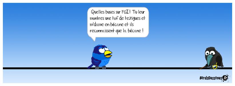 Occitanie - Escorte Goldwing au mariage d'Anita et Laurent  - Page 2 15789310