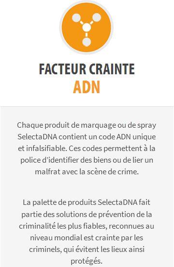 Un marquage ADN pour traquer les motards délinquants... Et + 2019-392