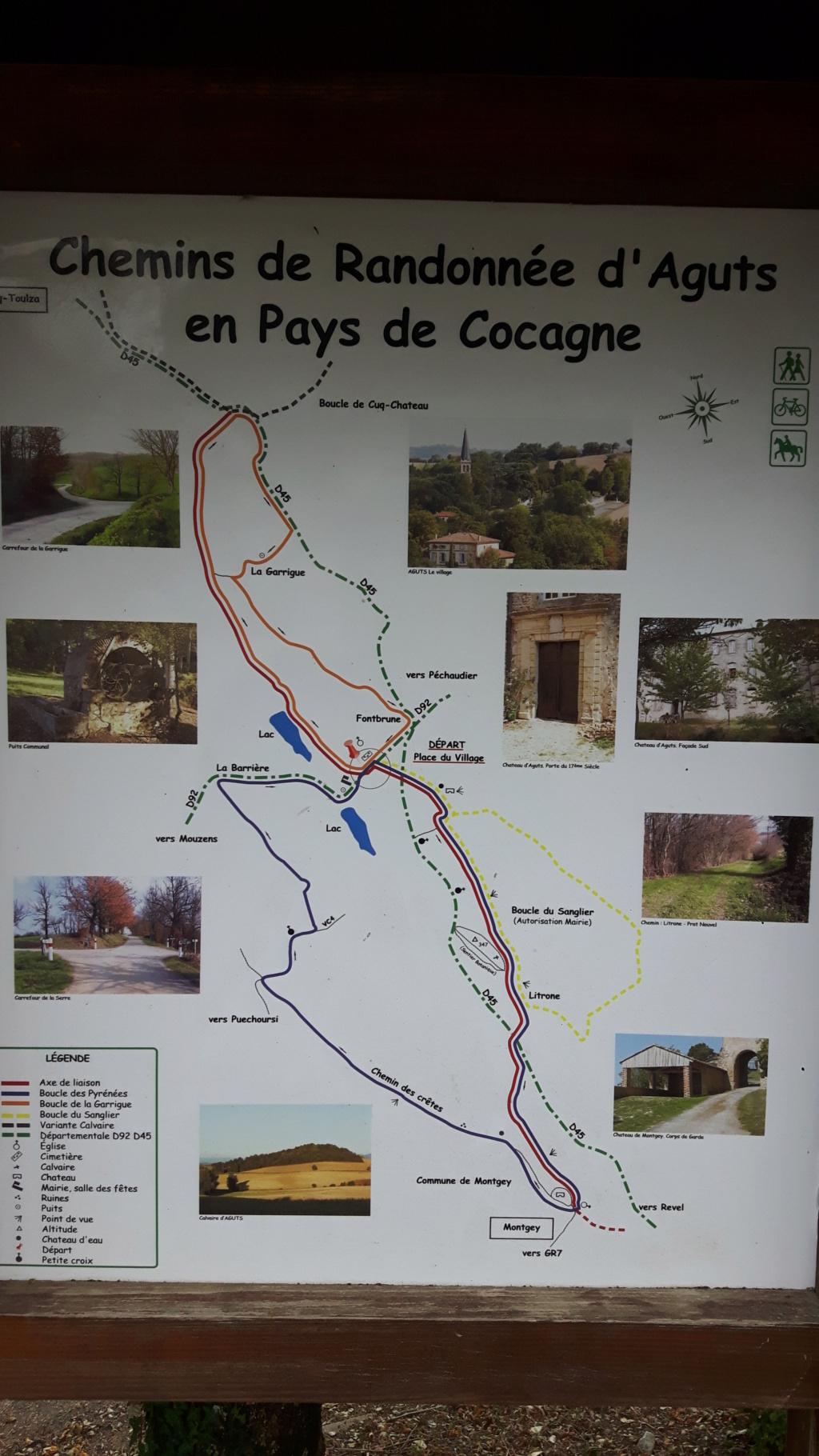 Occitanie - 15 Août - Vielmur: Passions d'Antan 20190842