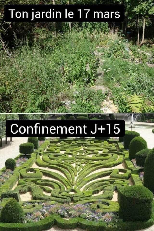 Que se passe t'il au jardin? - Page 10 90554110
