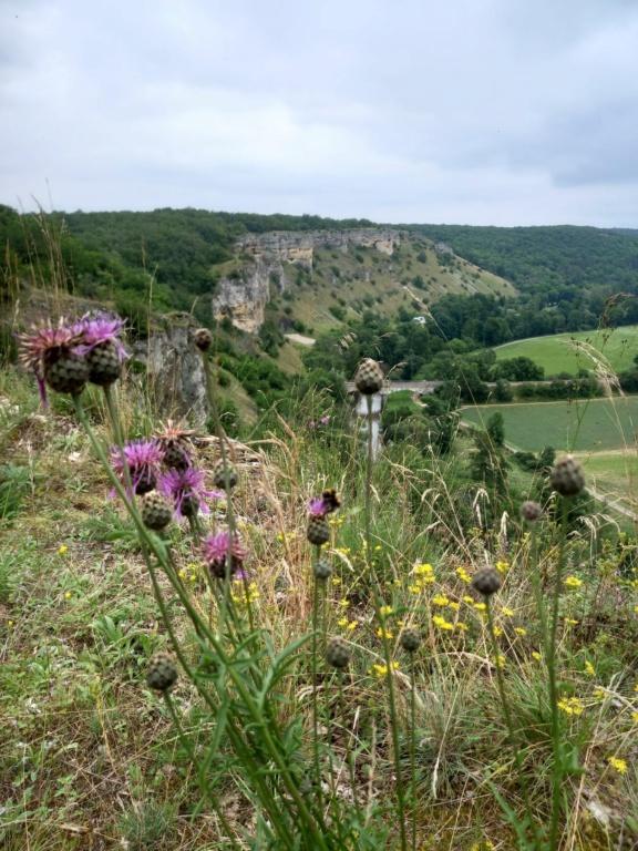 petite randonnée dans le Morvan Falais10
