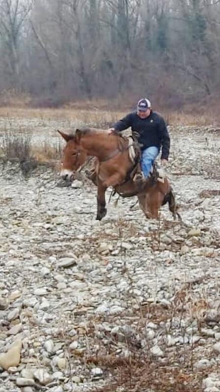 """Io frequento un """"ranch"""".  Vi racconto come è Lolafi10"""
