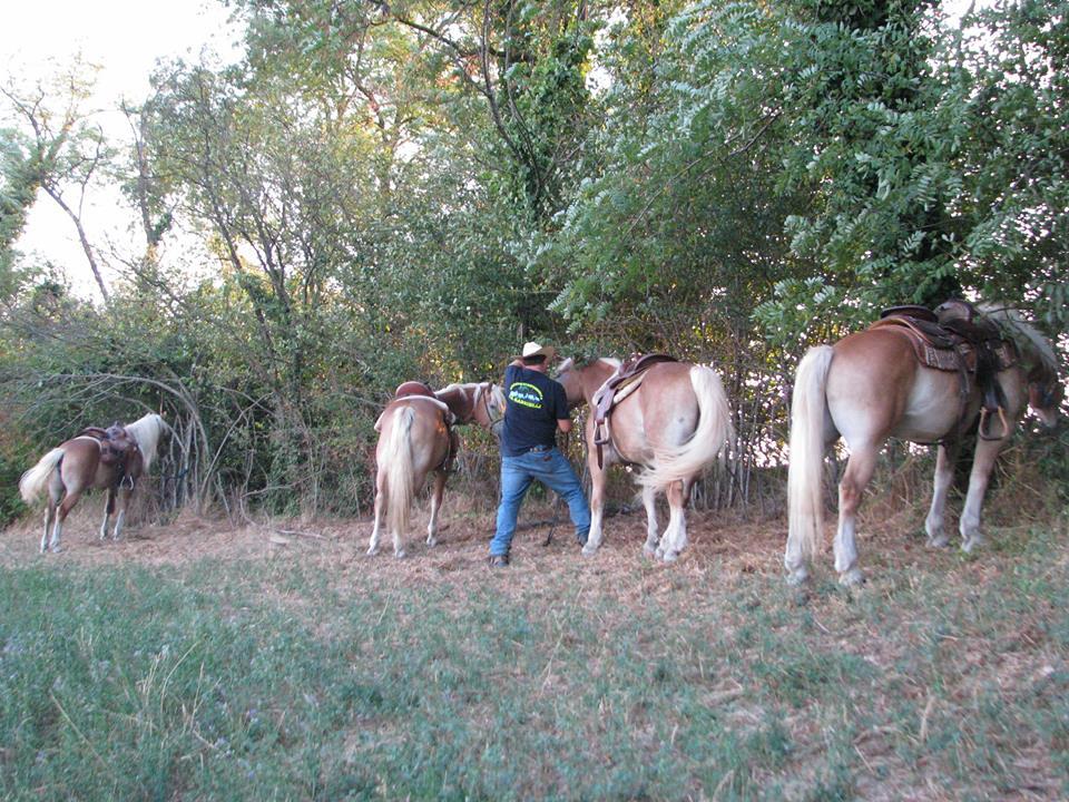"""Io frequento un """"ranch"""".  Vi racconto come è Piscin10"""