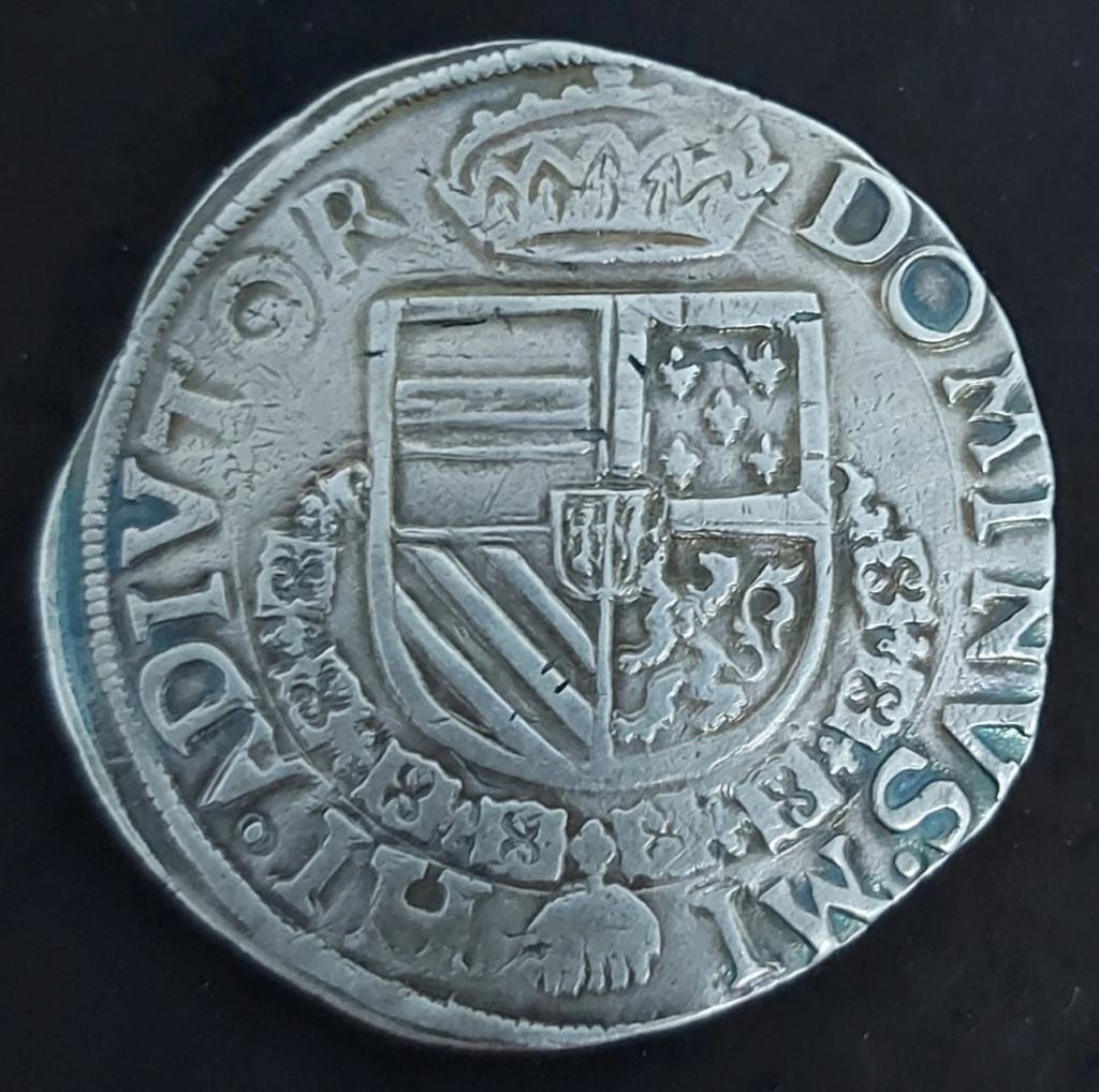 Escudo de Borgoña 1568, Condado de Holanda Picsar12