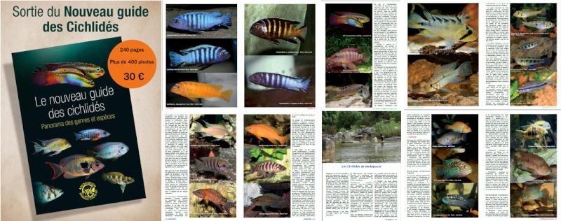 Aquatika - salon peche - bassin - aquariophilie a calais le 9 et 10 avril Bandea10