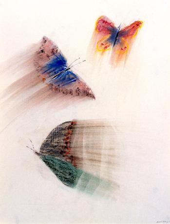 Cartes en bâtonnets et art contemporain (ou plus ancien) Papill10