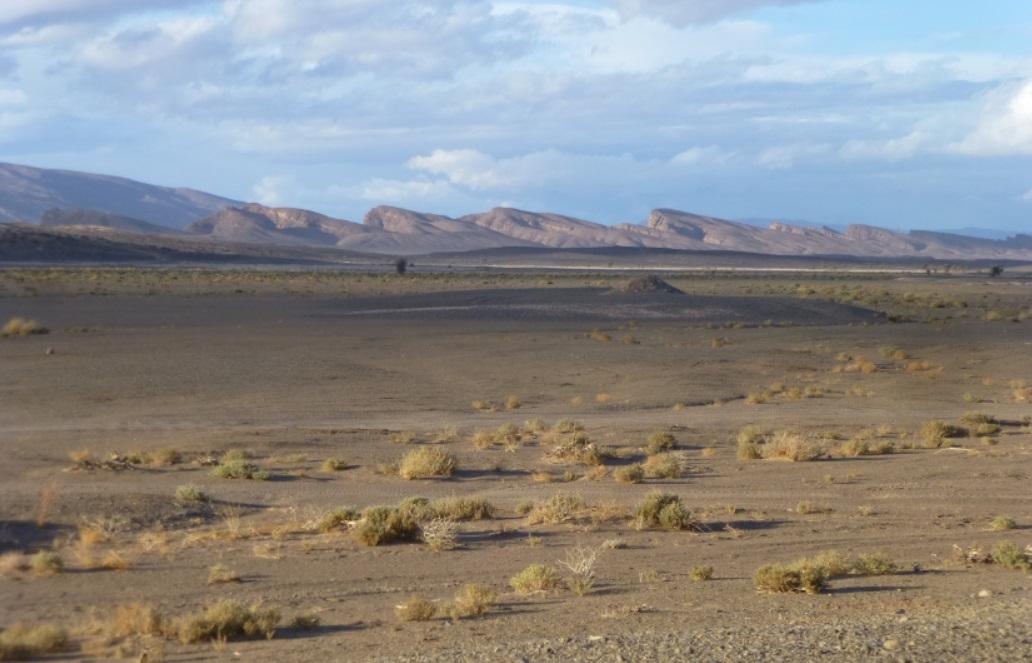 Maroc en Mars - Page 6 Maroc620