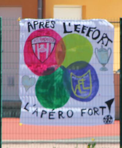 Finales départementales DDFL 2016 Afill010