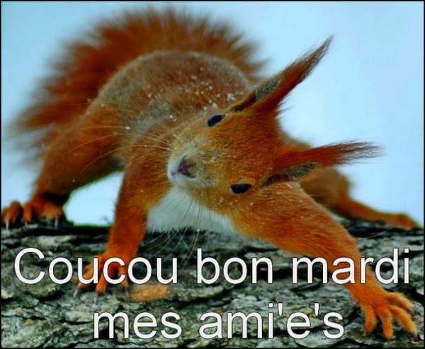 Ici on se dit bonjour  - Page 40 10828010