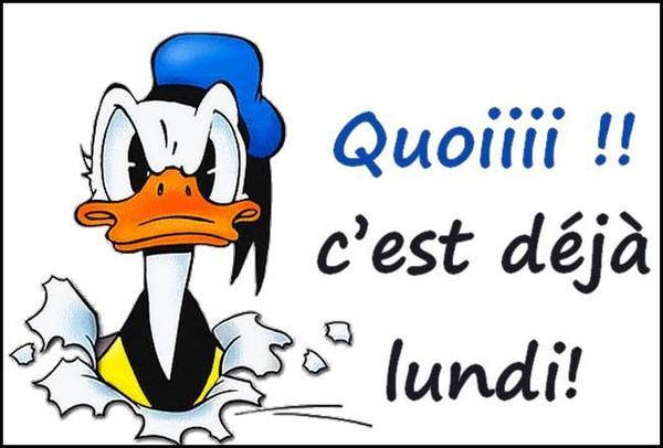 Ici on se dit bonjour  - Page 39 25aa9610