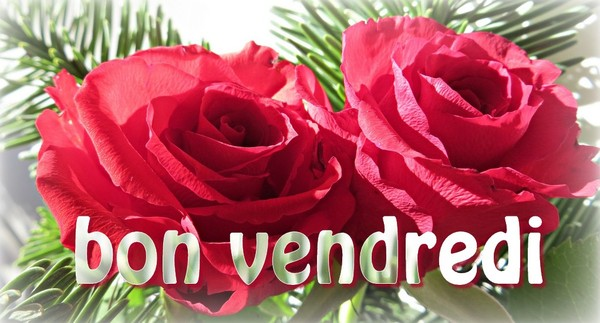 Ici on se dit bonjour  - Page 40 B7a3c610