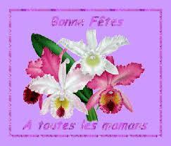 La fête des mères en France le 29 mai 2016 Images13