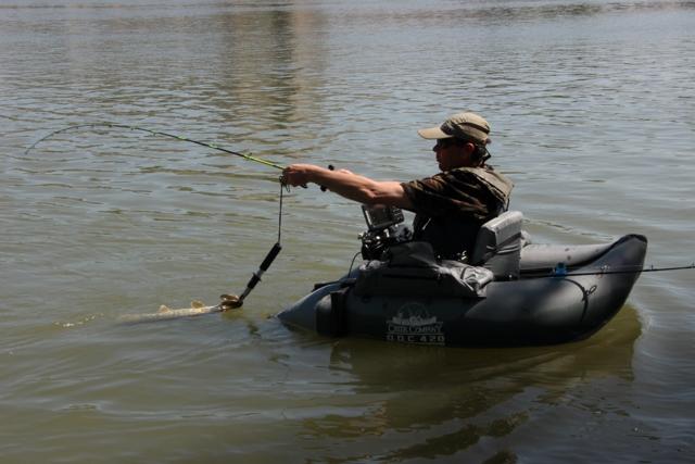 Initiation Pêche sur le Rhône Img_0216