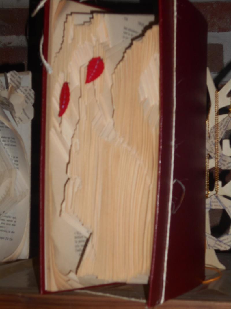 Pliage de livres Dscn0114