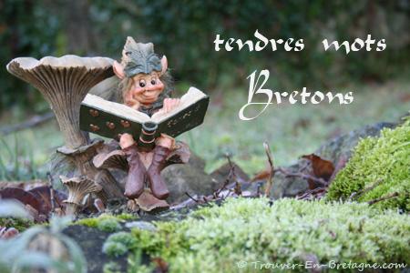 les mots... bretons! lol Anniv10