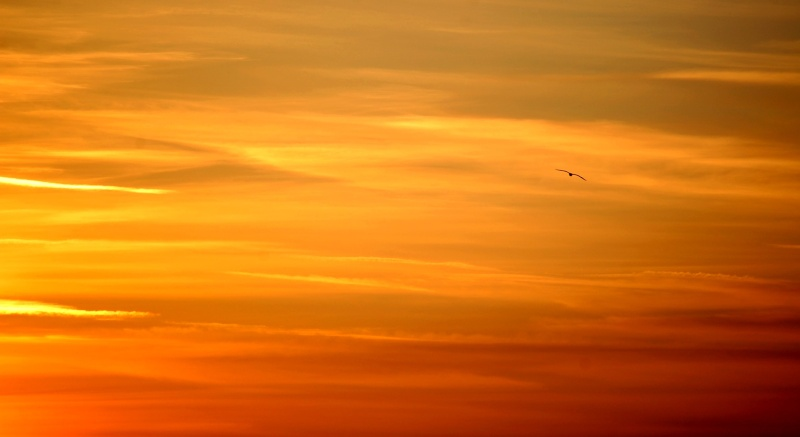 LES COUCHERS DE SOLEIL. et lever de soleil Calais19