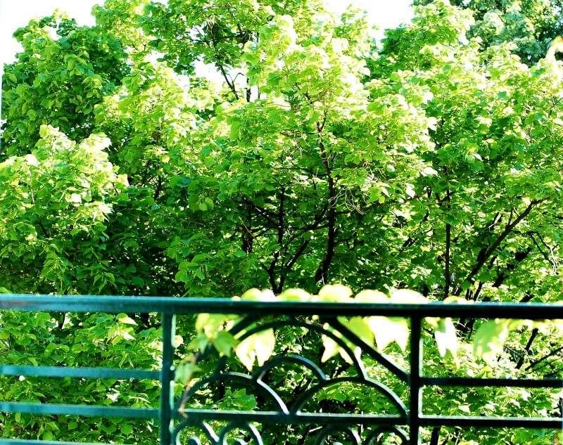 portes et fenêtres ,a vos photos De_la_10