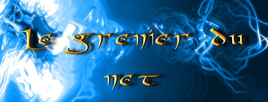 le Grenier du Net