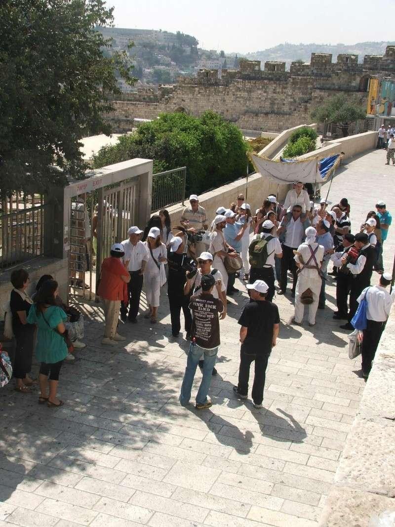 ISRAEL DU NORD AU SUD SUIVEZ-MOI - Page 6 Dscf2015