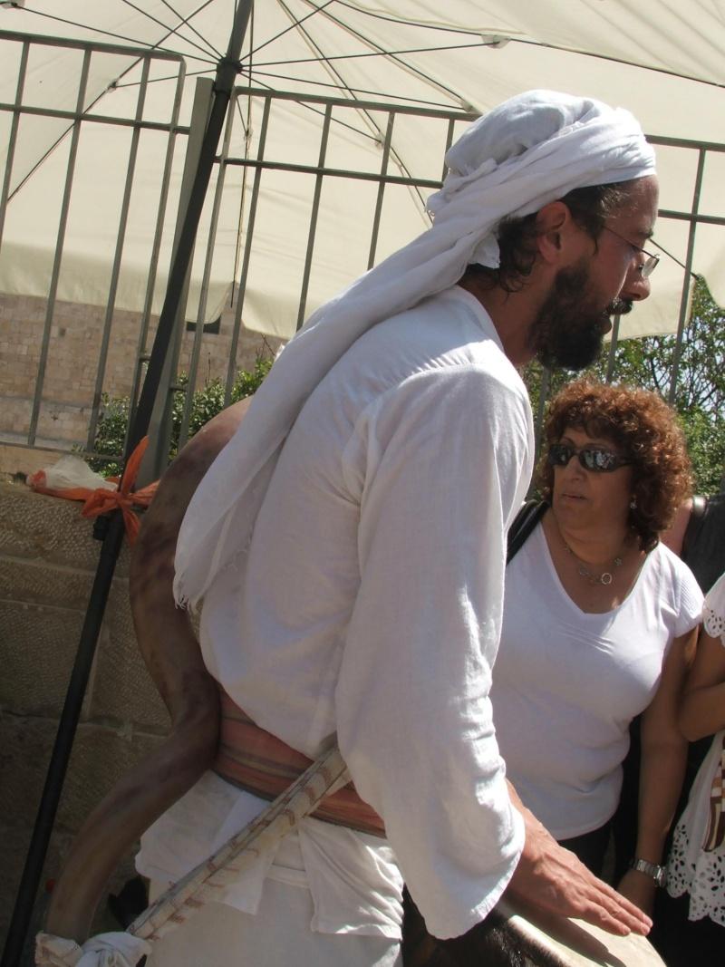 ISRAEL DU NORD AU SUD SUIVEZ-MOI - Page 6 Dscf2027
