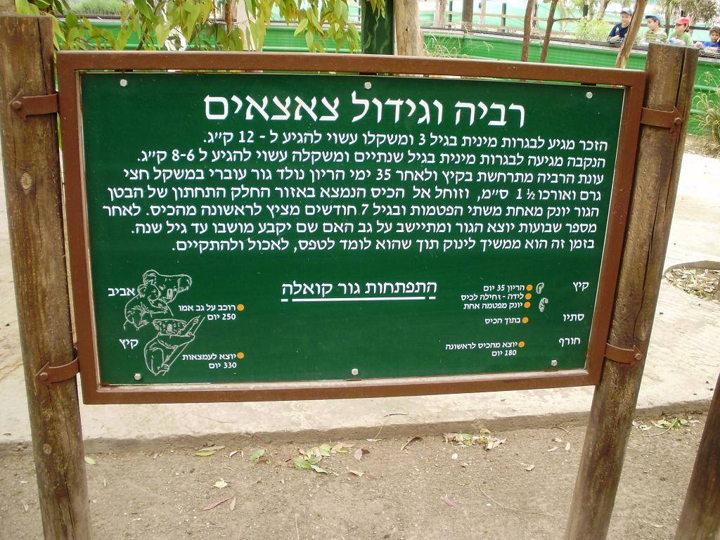 ISRAEL DU NORD AU SUD SUIVEZ-MOI P4230310