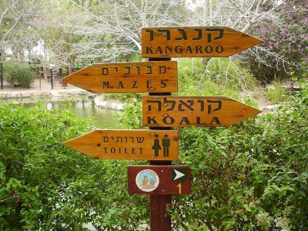 ISRAEL DU NORD AU SUD SUIVEZ-MOI P4230318