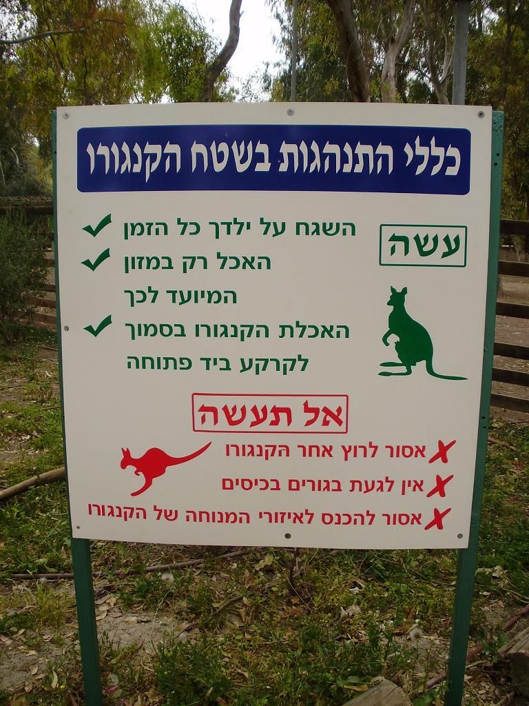 ISRAEL DU NORD AU SUD SUIVEZ-MOI P4230325