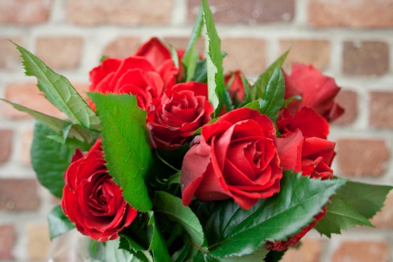 bouquet de rose -694810
