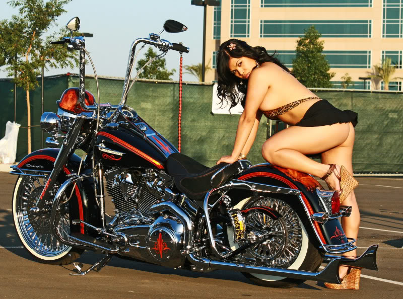 Birthday Geradau Harley10