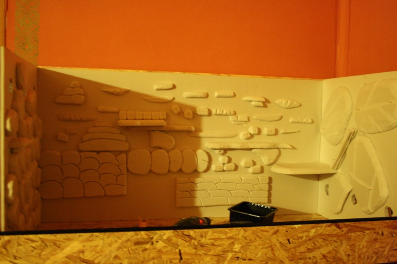 photos de montage de mon terra, et construction du décor Img_0016
