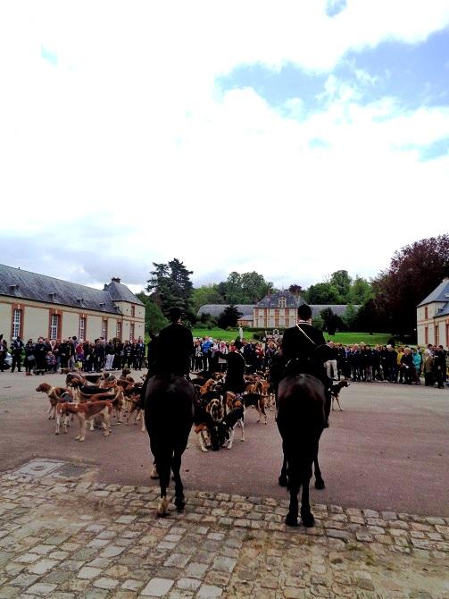 15 mai 2016 : Fête de l'Ecole d'agriculture de Grignon Photo_13