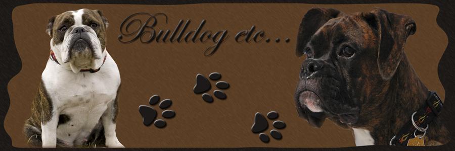 Bulldog etc...