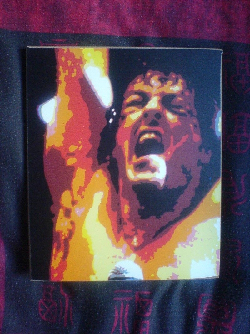 collection Rocky Balboa Gold - Page 2 Dsc00711