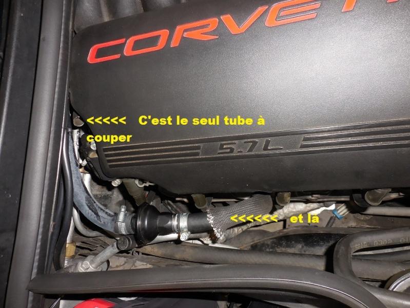 Astuces code P0420 ..P0410.. P1415..P1416 - Page 3 Dscn0315