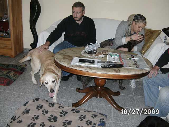 Des nouvelles (29 octobre 2009) Elsa-s10