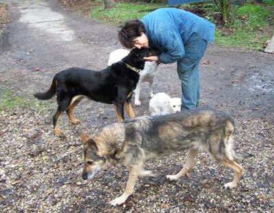 Balade au jardin (22 novembre 2009) Ma-jar19