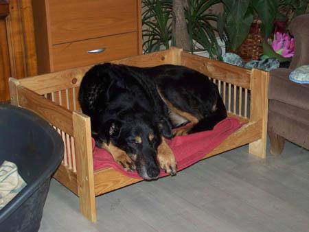 C'était pas prévu pour (13 novembre 2009) Max-pe10