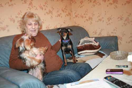 LUMINUS est adopté (20 décembre 2008) Minus-14