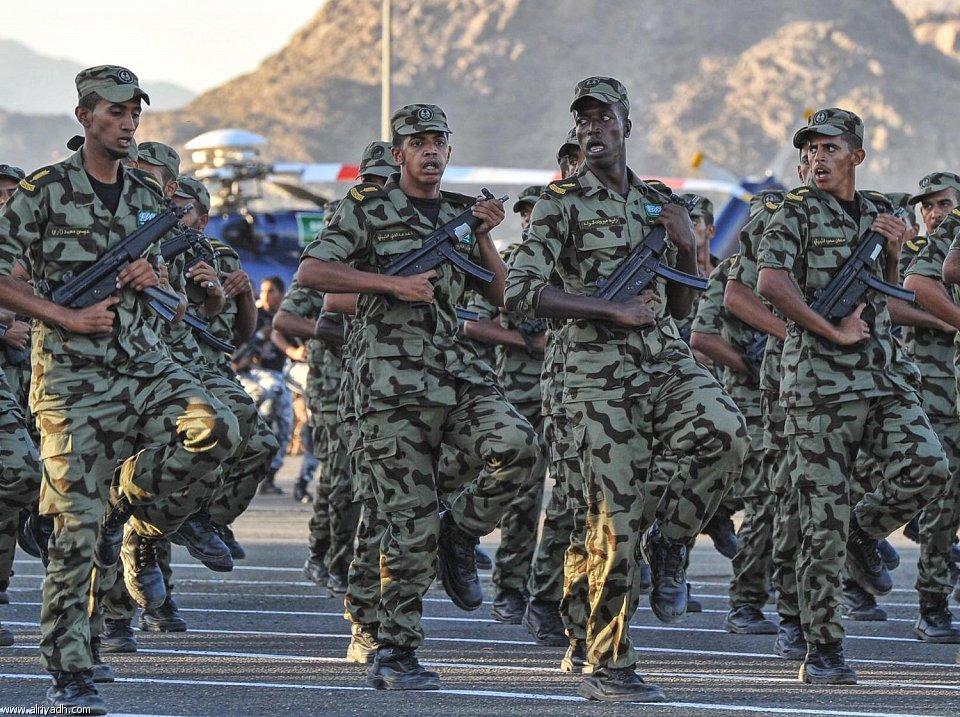 Royal Saudi Land Forces Arabie11