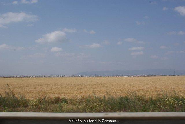 Mai 2009 - Meknès au coeur -  - Page 12 Copie101