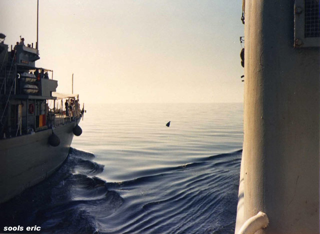 A961 Zinnia - Operation OCTOPUS - Page 9 016_0610