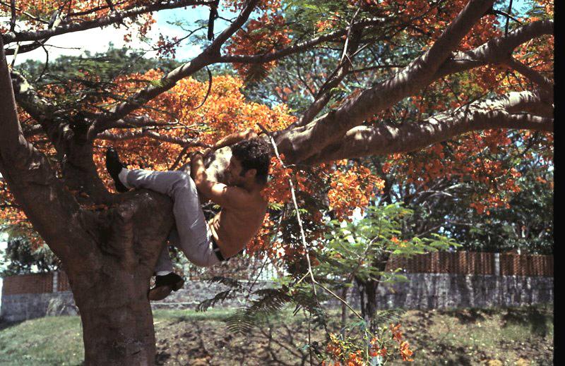 A961 ZINNIA voyage en Afrique en 1972 - Page 4 5-27-217