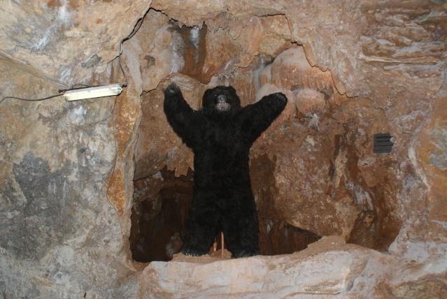 La Grotte des Demoiselles Dsc01119