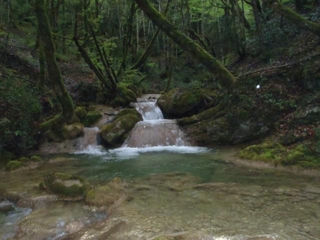 ruisseau - Ruisseau cascadeur P4160010
